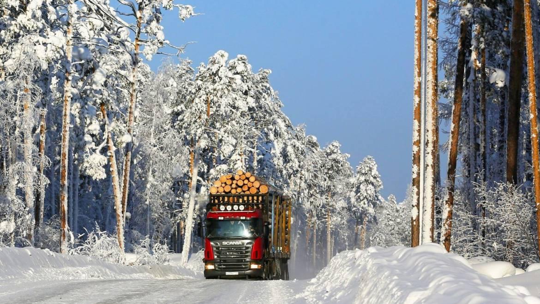 АО Краслесинвест планирует построить 133 км лесных дорог