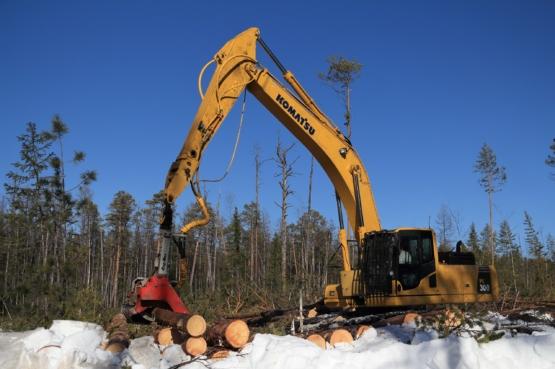 Инвестиционные проекты в лесную отрасль