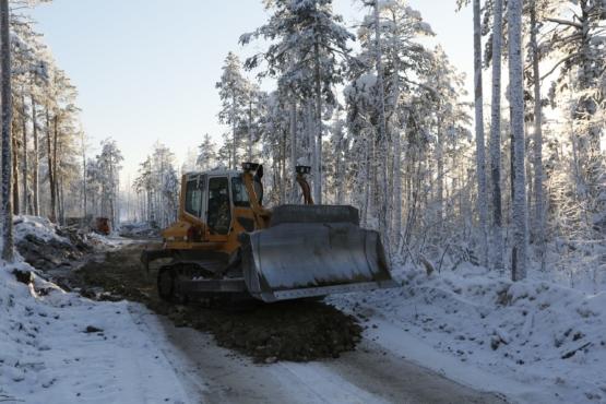 Защита леса от пожаров.