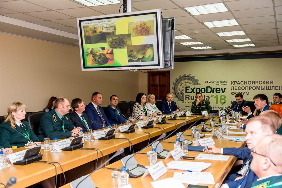 «Краслесинвест» готов стать пилотной площадкой по внедрению модели Интенсивного лесопользования в Красноярском крае